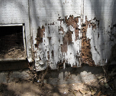 Wood damage on the exterior of a home, caused by termites.